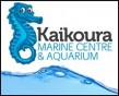 Kaikoura, Accommodation, Bed & Breakfast